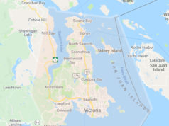 wind warning, storm, vancouver island