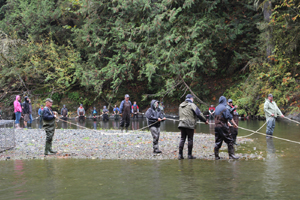 salmon enhancement, sooke river