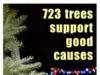 xmas tree sale, sd62