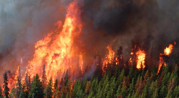 BC wildfire