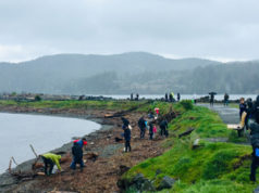 beach cleanup, Sooke, Whiffin Spit, Surfrider Vancouver Island