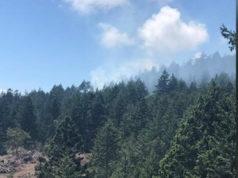 East Sooke, Mt Matheson, wildfire