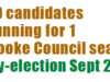 Sooke by-election, candidates