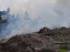 brush fire, Langford Fire Rescue