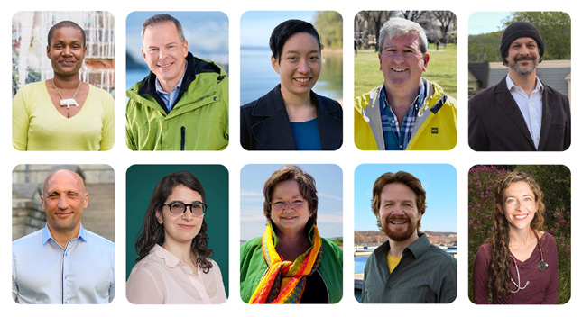 Green Party leadership candidates, 2020