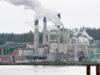 industry, pulp mill