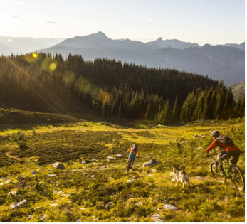 Mountain biking on Mount McCrae, BC