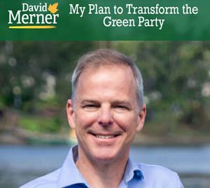 David Merner, Plan to Transform, Green Party