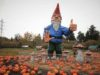 gnome, Galey Farns, October 2020