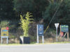 real estate signage, Colwood, October 2020