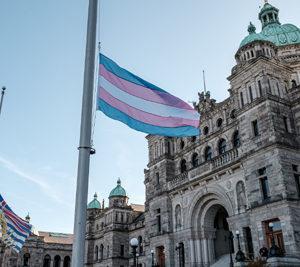 Transgender Day of Remembrance, 2020