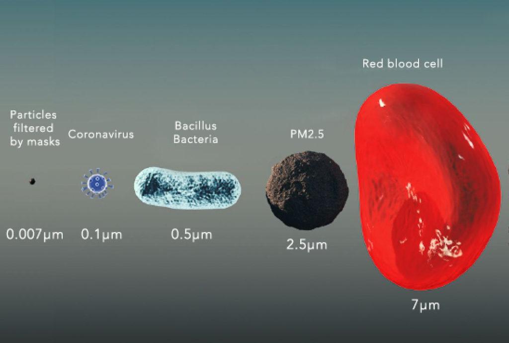 coronavirus, particle size