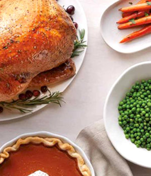 turkey dinner, xmas