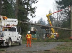 BC Hydro, power outage, cleanup