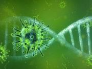 coronavirus, green