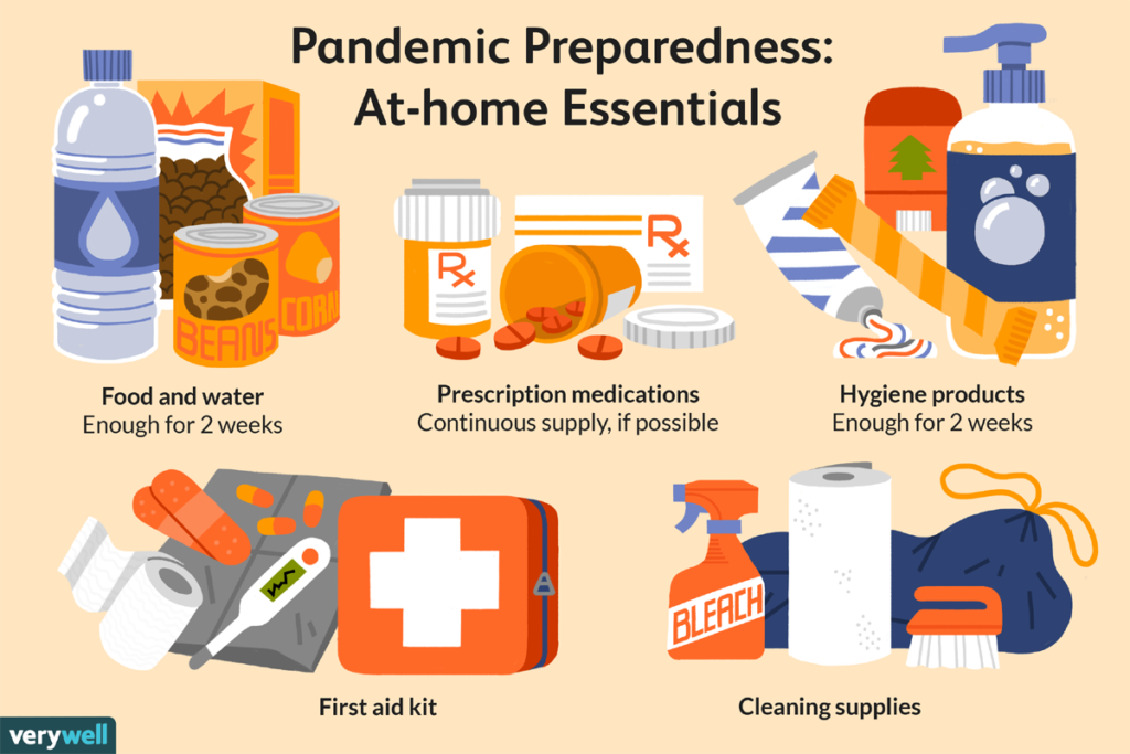pandemic, emergency kit