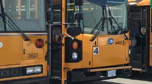 school buses, SD62
