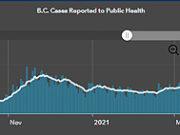COVID, graph, cases