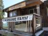 farm, seeds