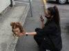 hairdresser, training