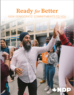 ndp, election, vision