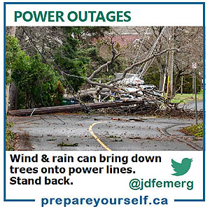 Stand back from any fallen trees or power lines.