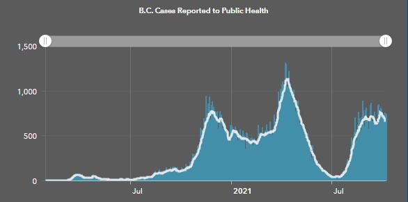 covid, cases, graph, oct 8 2021